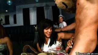 Chicas calientes y un oso dulce