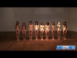 Polluelos japoneses desnudos