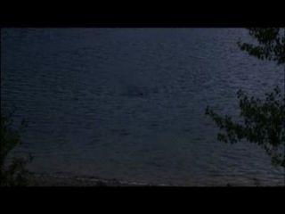Desconocido junto al lago 2013