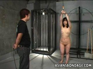 Chica japonesa azotada y enlazada