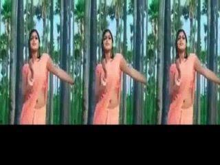 Chica kerala meghana raj caliente culo agitar y ombligo show en saree mojado