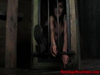 Mollie rose castigado con serpiente negra