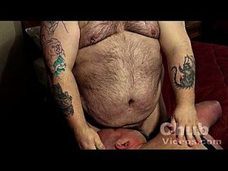 osos grandes de vientre peludo