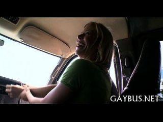 picoteo salvaje equitación dentro de un coche
