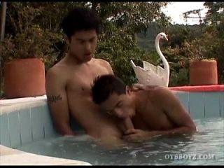 jóvenes latinos jodidamente sin pelo en la piscina