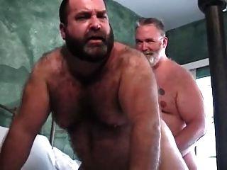 Xxxl big daddy el oso de la reparación