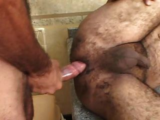 Brasilian gordito oso teniendo duro pene profundamente