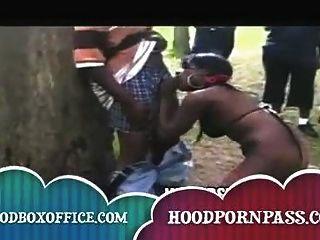 Negro felones fuc fuera en el parque en lugar de recoger la basura
