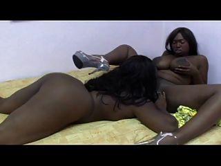 Ebony lesbian fever xvi ... usb