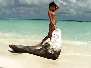 Morena girlie juega con su pussie afeitado en la playa