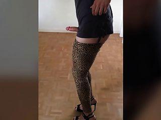 Polla que se balancea en polainas del leopardo