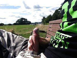 Dick público flash