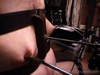 Tortura de silla