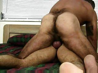 Musculoso peludo tener sexo sin pelo