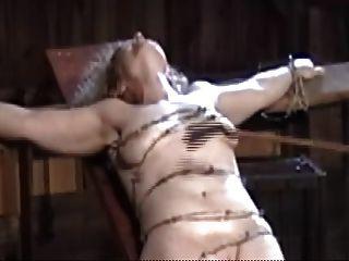 Atado con alambre de púas, trituración de ternera blanda y carne de coño