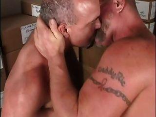 Papás peludos que trabajan duro