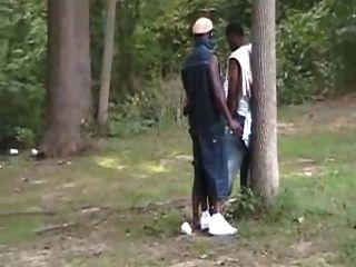 Puta negra orgía en el parque.