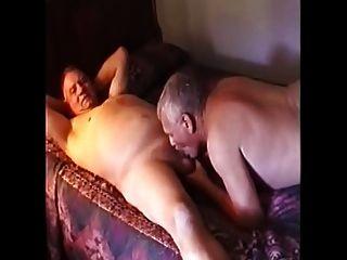 Papás de osos rectos