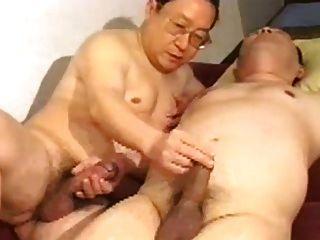 Oso japonés