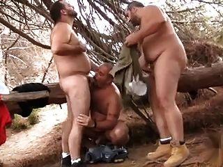Osos peludos 3some en el bosque