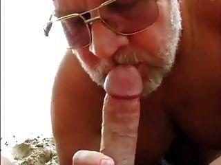 Oso de playa