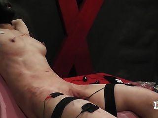 Tortura eléctrica