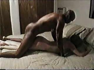 Marido como ver a su esposa follar un toro negro