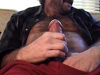Papá oso peludo estalla