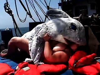 patrulla gorda de la playa 4 (ataque del tiburón)