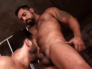 barbudos peludos montandoselo
