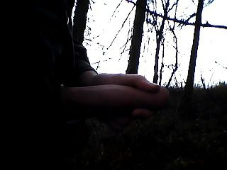 yo en la madera, ich im wald