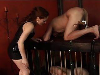 hombre obtiene pelotas y tortura gallo de dominatrix