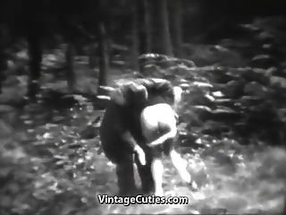 la perra impresionante se divierte en el bosque (vendimia de los años 30)