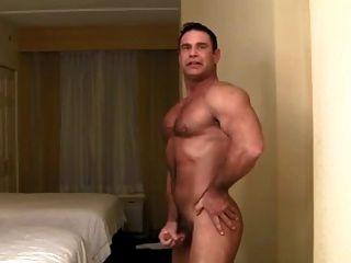 músculo oso papá tiras para usted