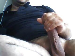 masturbándose turco oso turco han cums