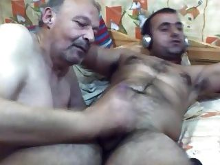 oso búlgaro