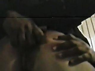 Careena Collins castiga del esclavo blanco