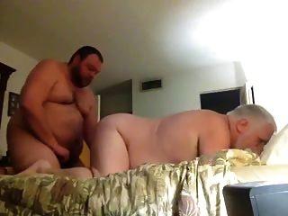 Crempie padre viejo por oso de pelo
