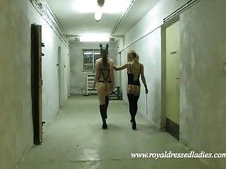 lesbianas ponygirls bdsm putas petplay ponyplay pony girls