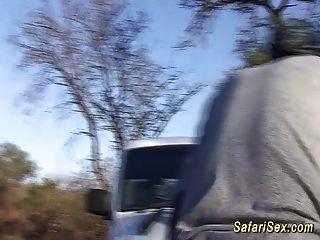 excursión sexual extrema safari africano