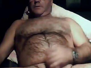 oso peludo papá 22917
