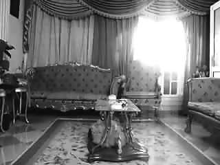 danza del hogar oriental egipcio