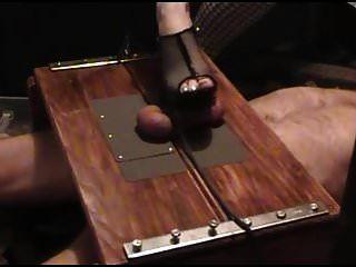 Tortura de gallo en la caja de pisotear