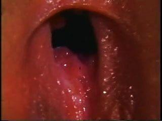 sujetador adolescente rompe las grandes superestrellas de los años 70 (1976)