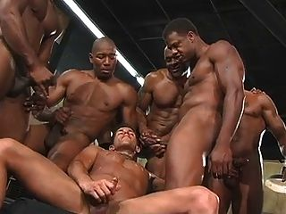 Negros películas porno gays Gays Negros Gays Hombres Bukkake Videos Porno Xchica Com